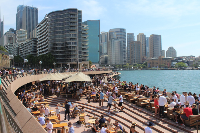 Sydney Circular Quay – Bar