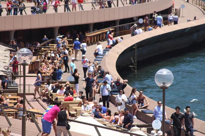 Sydney Circular Quay – Oyster Bar