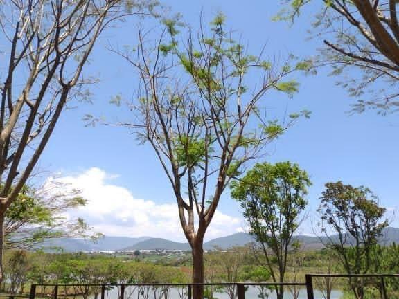 Da Lat – Faszination im Bergland von Südvietnam