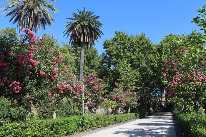 Parkanlage Giardino Bellini