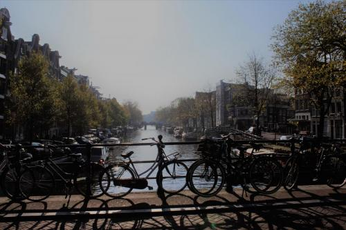 Amsterdam Stadtleben